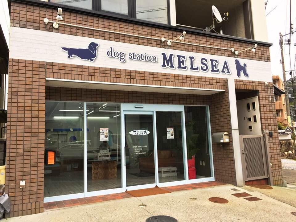 dog station MELSEA